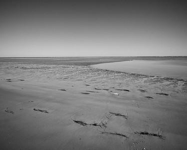 Crane Beach - Ipswich, MA