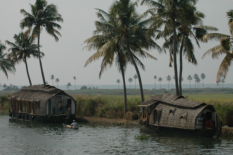 House boats docked along the banks of the backwaters in Kerala