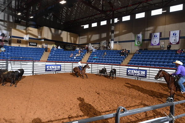 Western Her Masters RSNC Finals 2018 Fort Worth TX