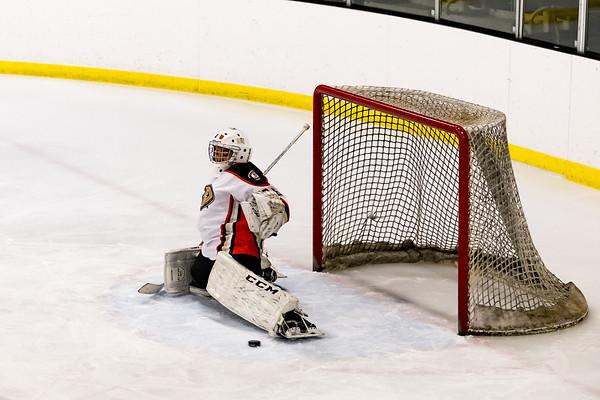 Jr Ducks Vs Ice Dogs 11-29-19