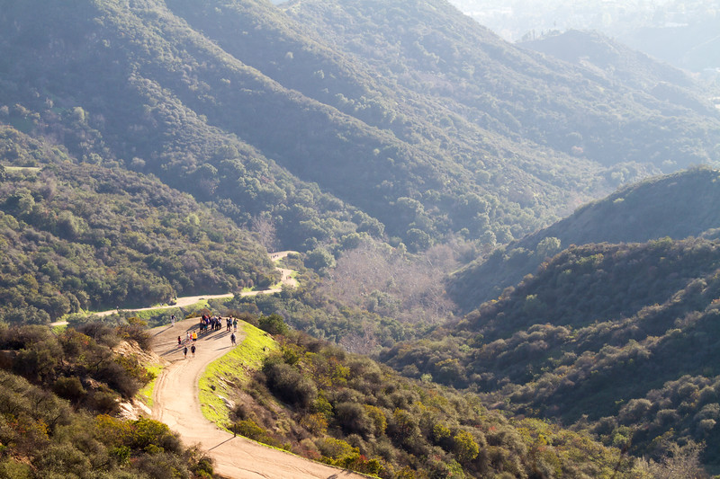 People hiking up to Hollywood sign - USA - California - Los Angeles