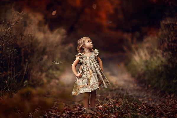 Fall Foliage Sessions