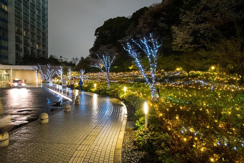 Tokyo Day 2 (273 of 280).jpg
