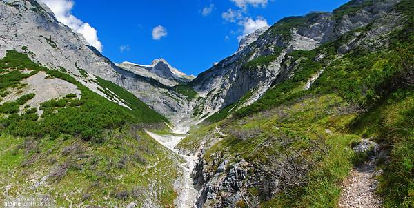 Alps in Summer