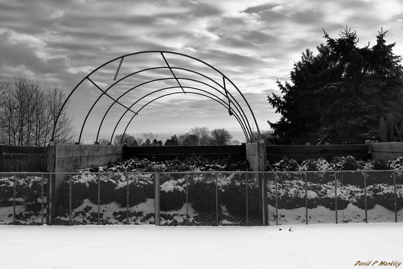 Greenhouse Arch