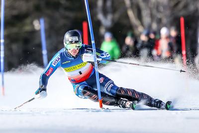 2015 US Alpine Championships