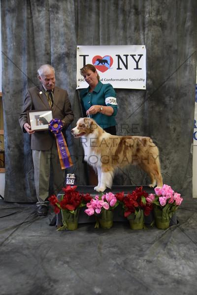 2015 HONYASC Dawg Daze and Specialty