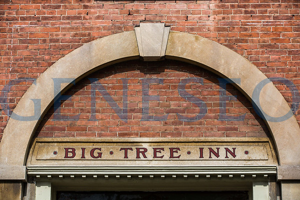 Big Tree Inn
