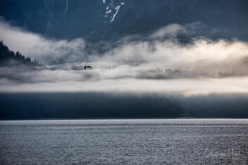 glacier bay_20120810_7642.jpg