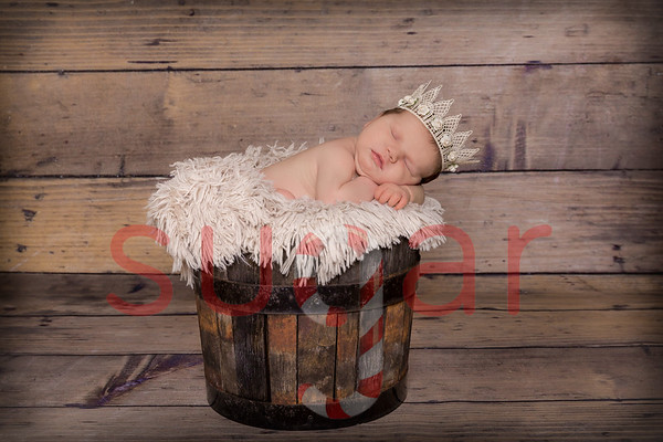 Ellie's Newborn Photoshoot