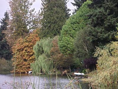 Echo Lake Scenes