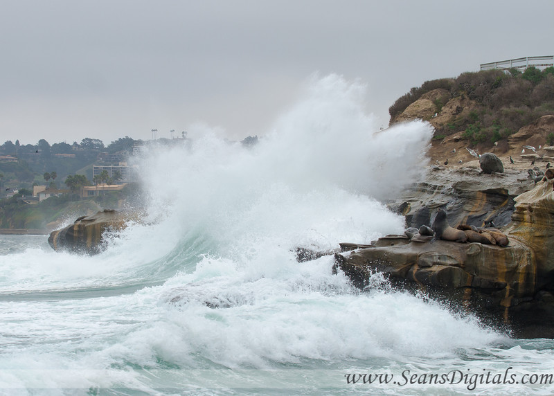 La-Jolla-waves-6.jpg