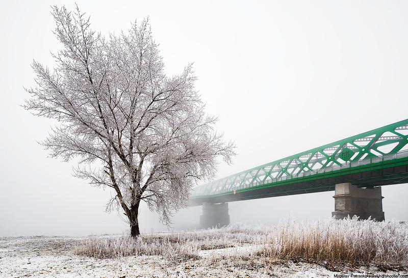 Bratislava_DSC3417-web.jpg