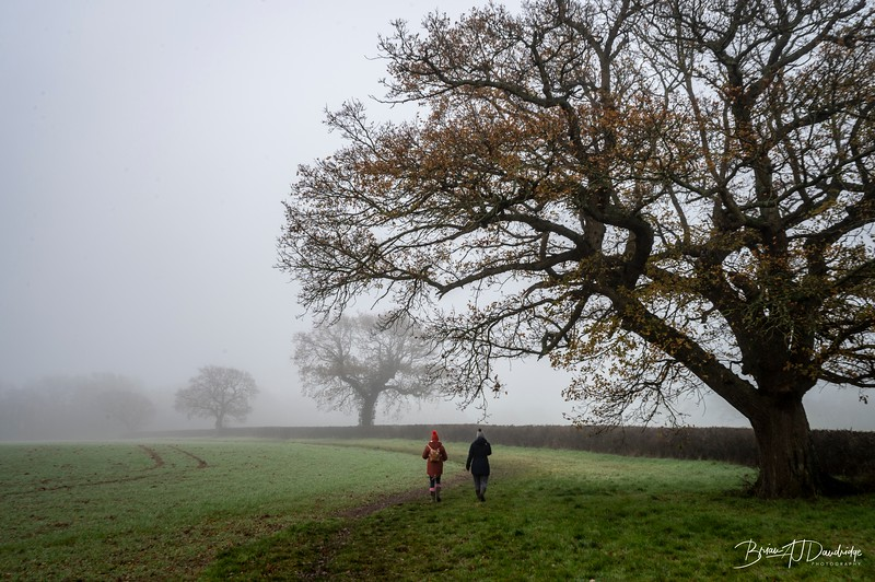 Foggy Hassocks-6929.jpg