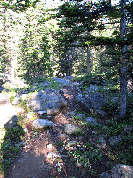 Mount of the Holy Cross 7-12-2010 061 b.jpg