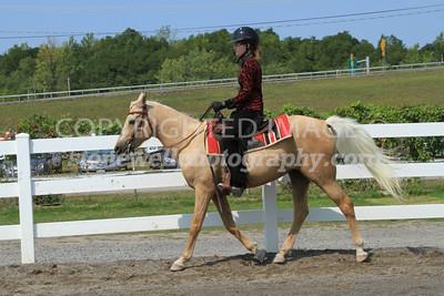Western - Pony 2012