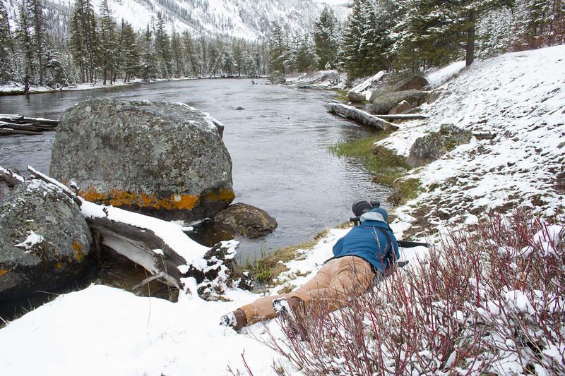Ryan photographing shooting Harlequin Ducks Madison River Yellowstone National Park WY IMG_0204.jpg