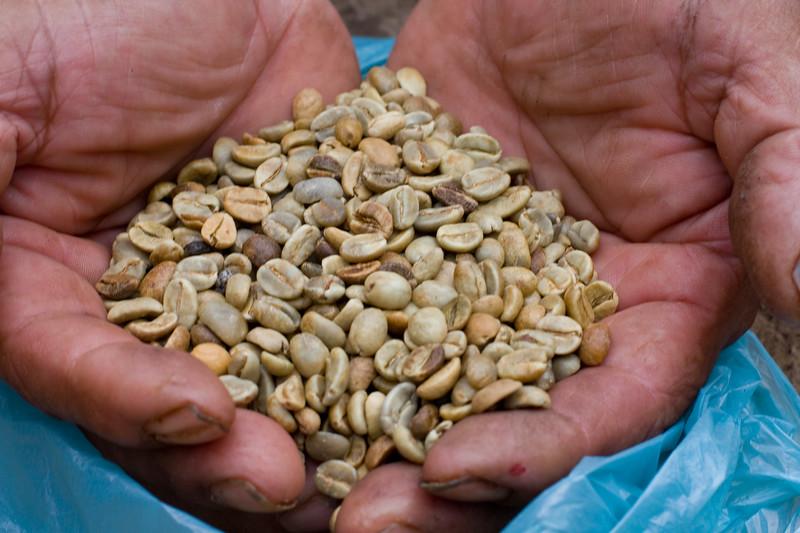 cunes-coffee-beans_4809121395_o.jpg