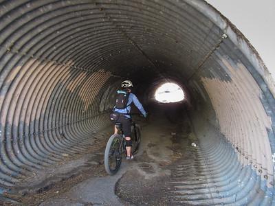 2021-02-07 PMP Trail 100