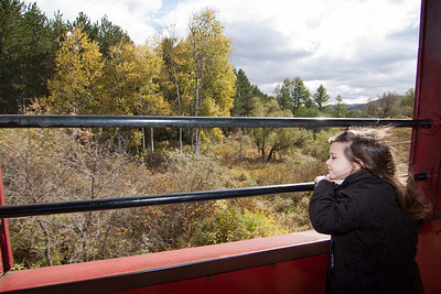 Freja enjoys the scenery as we ride the Tioga Central Railroad. We had the open car completely to ourselves for most of the trip. That meant no worries about just letting her run and have fun. While the fall colors were past peak by about a week, it didn't matter to us.