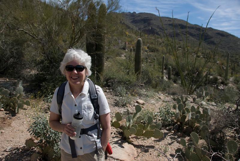 Hiking the Pima Canyon Trail.