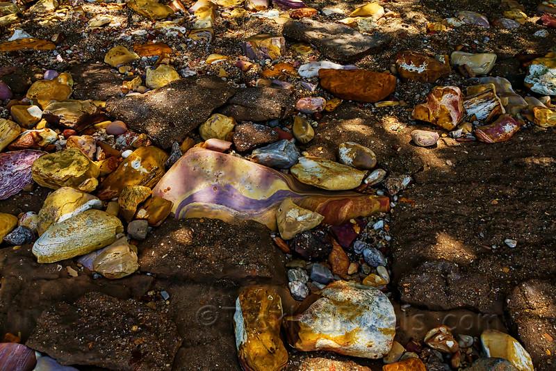 The Colours of Lameroo Beach