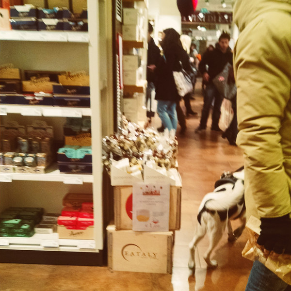 Firenze MOB (4).jpg