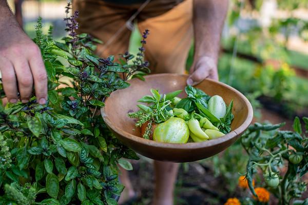 Sac Magazine~Chefs' Gardens~Finals~9 2020