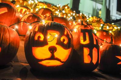 PumpkinFest & Lighting