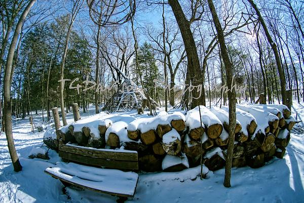 Snow Trolls II Morton Arboretum 2019