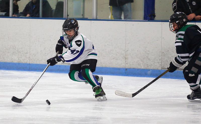 2016-Jan_29-Hockey-JPM0008.jpg