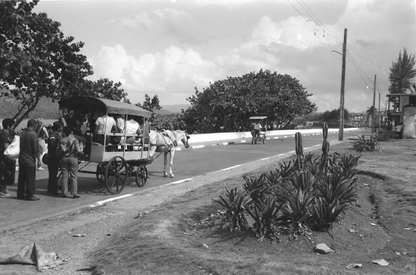 Baracoa Transport - Baracoa, Cuba