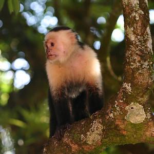 Costa Rica Trip 2007