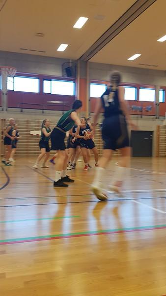 Basket16.jpg