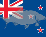 WCC-flag-New-Zealand-200x120.jpg