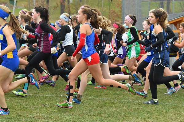 2015 New England HS XC Championship at Thetford Academy