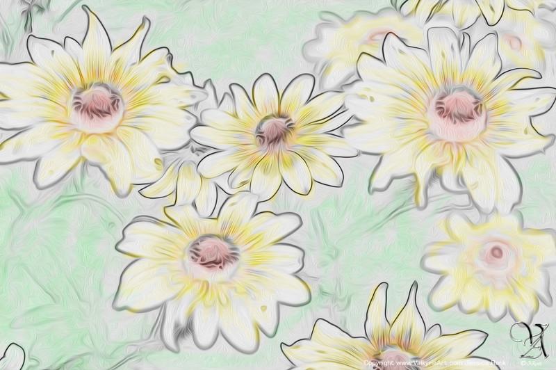 Flowers DSC_1014a.jpg