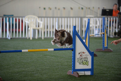 Saturday Masters Challenge Jumpers