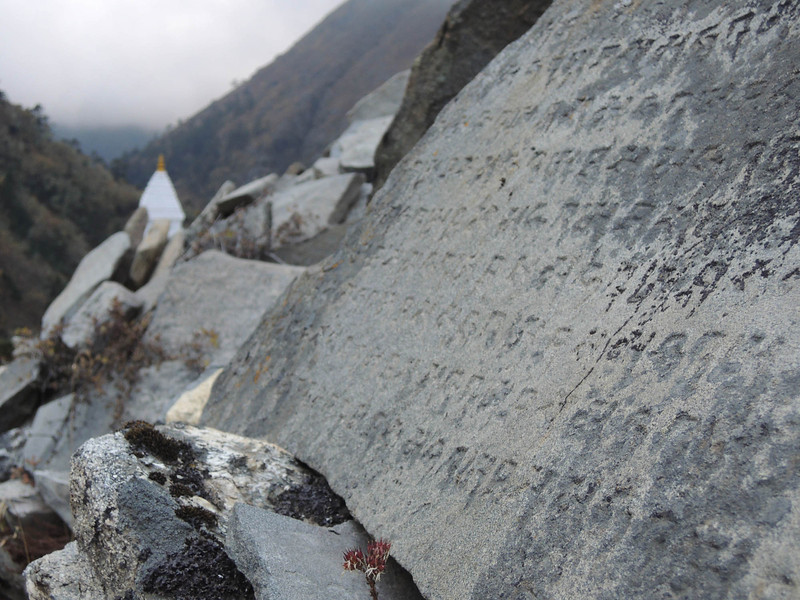 2013-Nepal-2826.jpg