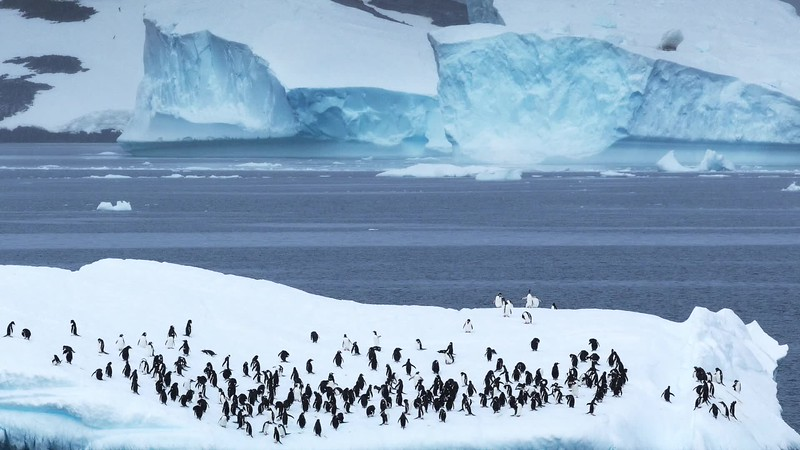 In the footsteps of Shackleton 2017-18 (silent)