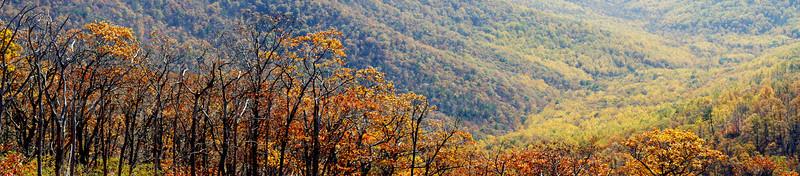 Autumn Panorama.jpg