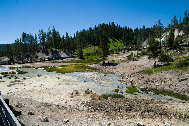 20100713_Yellowstone_2733.jpg