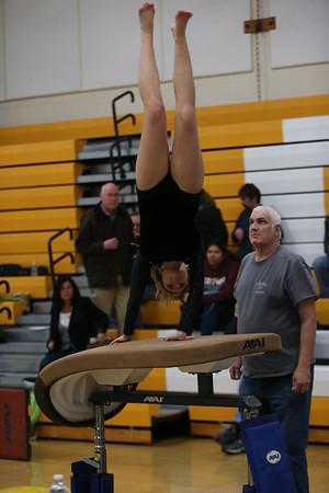 Edsel Gymnastics vs Grosse Point