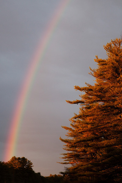 On the Road to Acadia, we found a Rainbow
