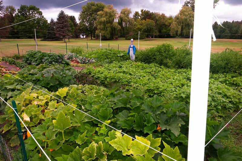 20140912 ABVM Garden-1406.jpg