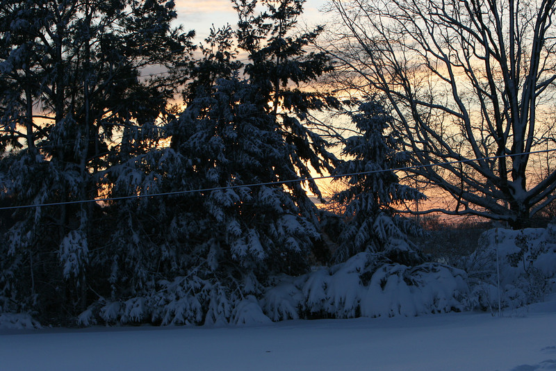 snow 2010 feb IMG_2387 (10).JPG