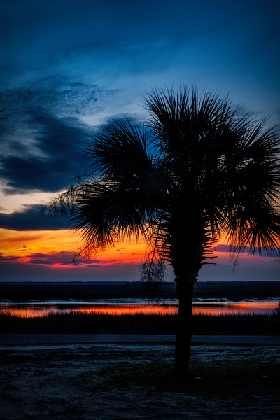 South Carolina Low Country