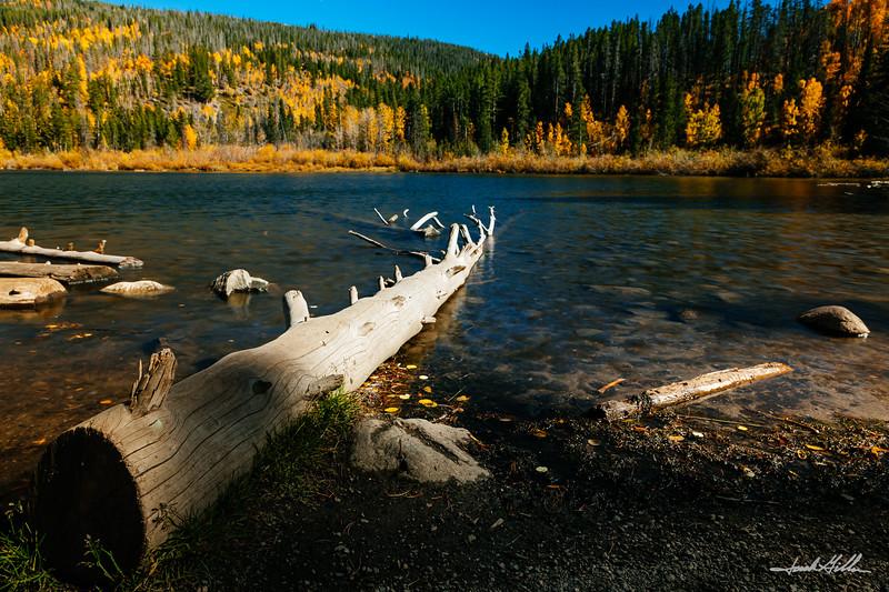 Fall Color At Rainbow Lake