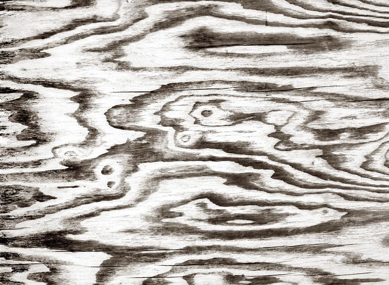 1996-07 Plywood abstract 445b.jpg