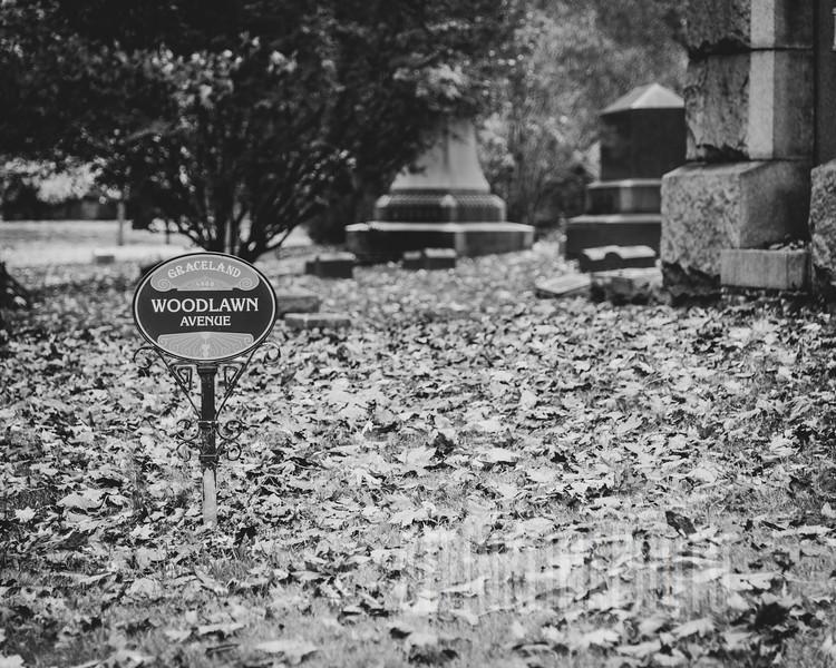 Woodlawn Avenue